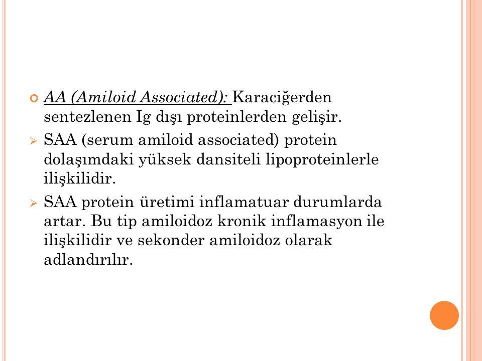 AA (Amiloid Associated): Karaciğerden sentezlenen Ig dışı proteinlerden gelişir.