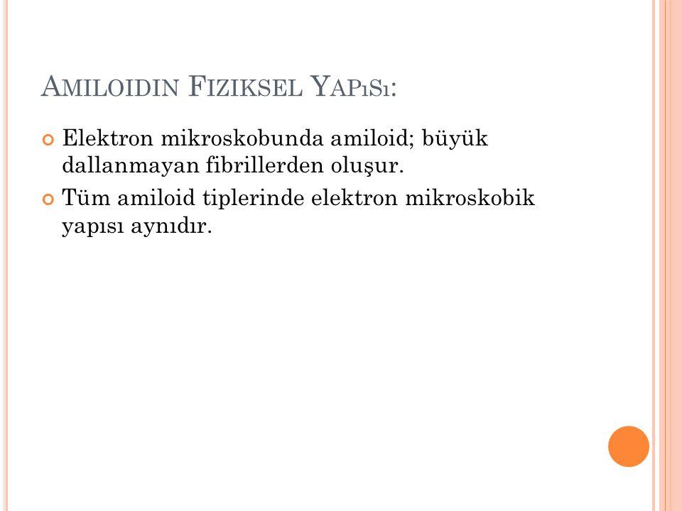 Amiloidin Fiziksel Yapısı: