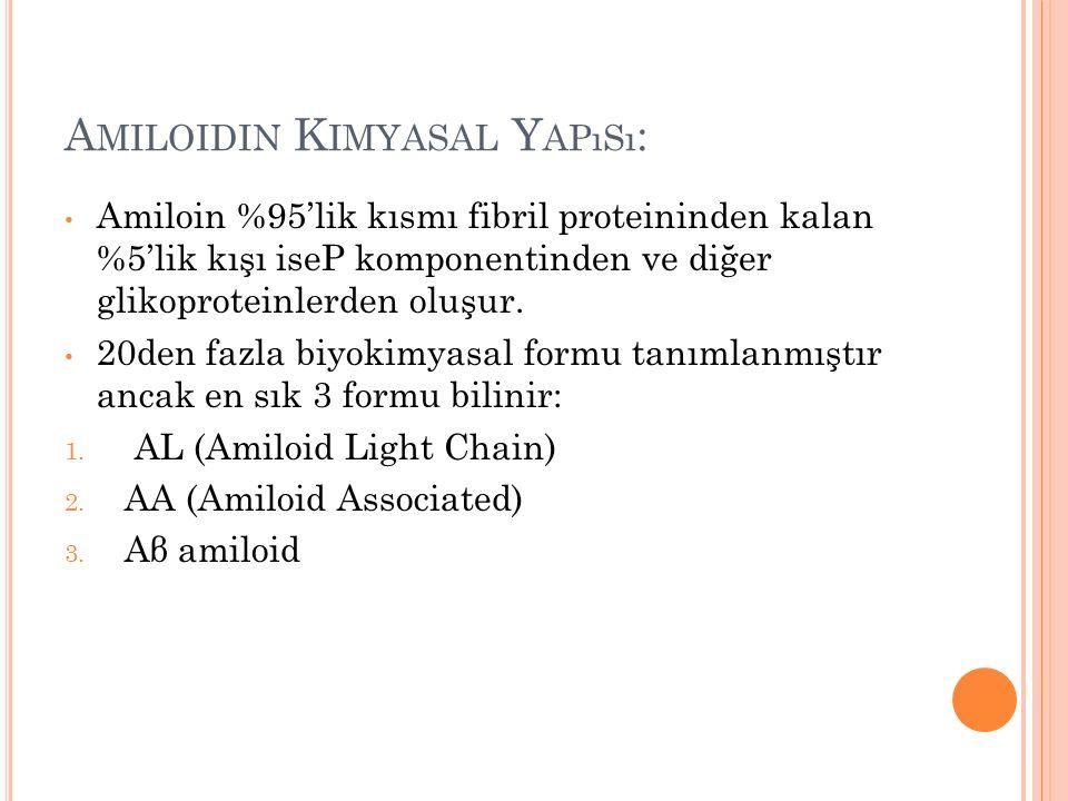 Amiloidin Kimyasal Yapısı: