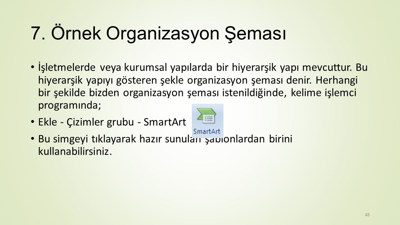 7. Örnek Organizasyon Şeması