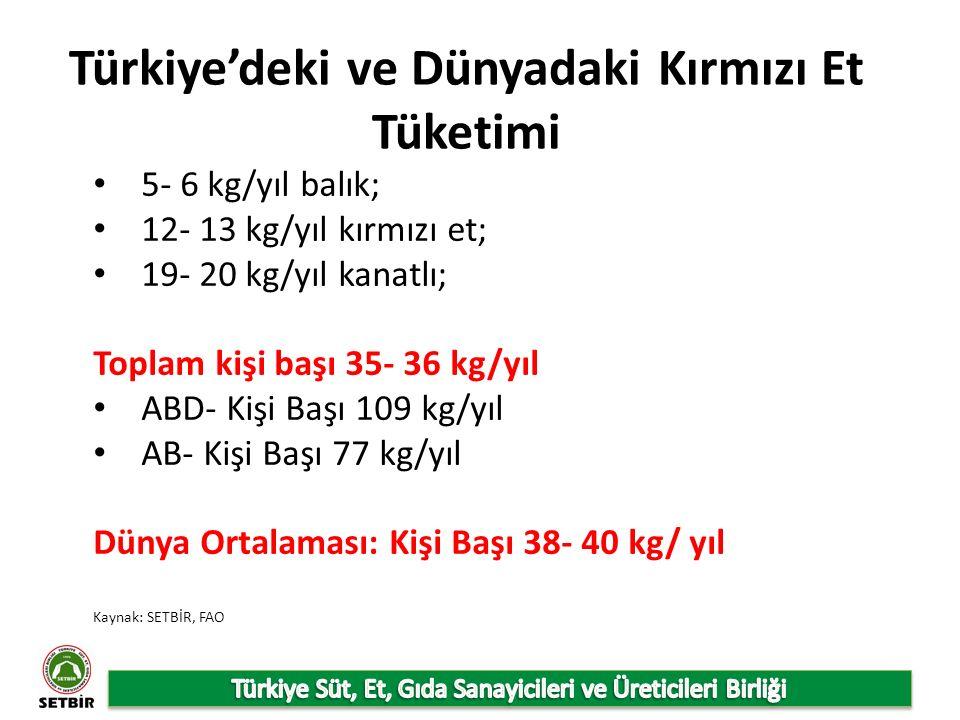 Türkiye'deki ve Dünyadaki Kırmızı Et Tüketimi