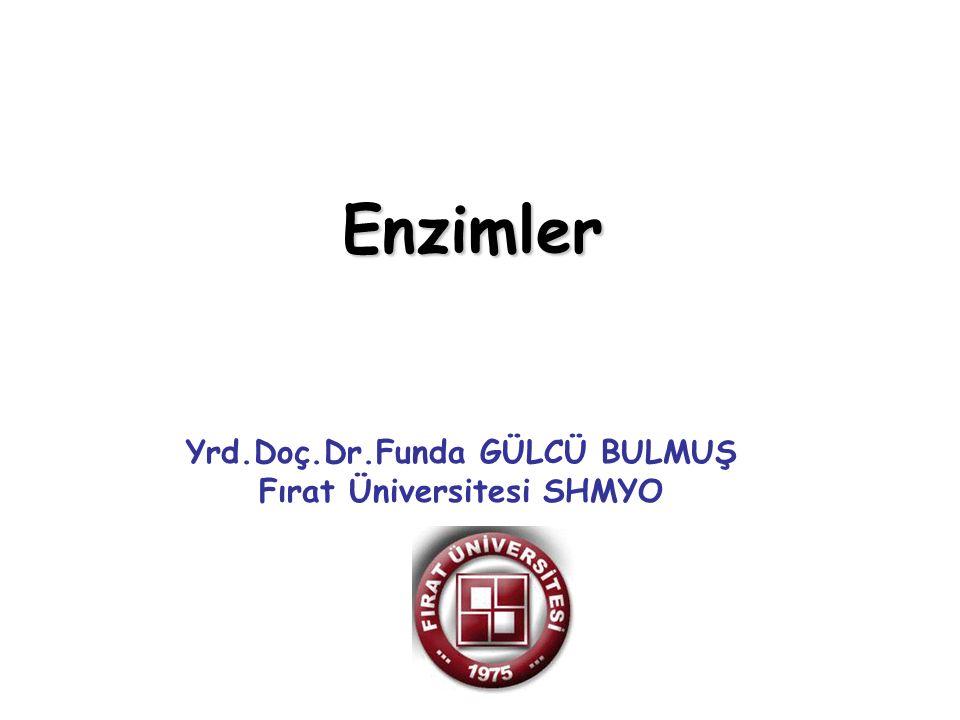 Yrd.Doç.Dr.Funda GÜLCÜ BULMUŞ Fırat Üniversitesi SHMYO