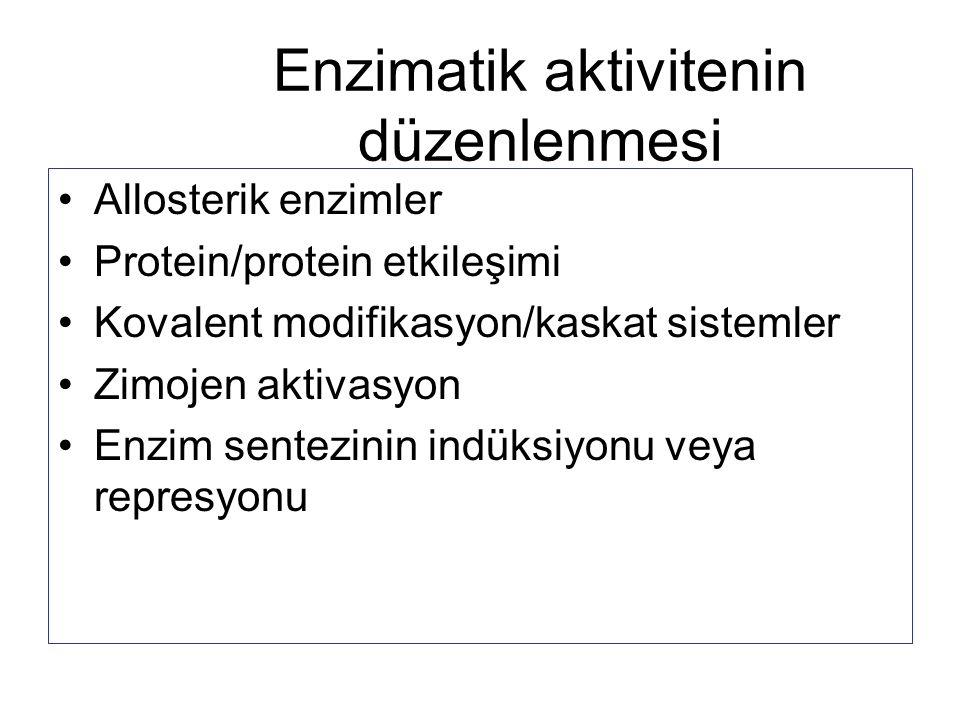 Enzimatik aktivitenin düzenlenmesi