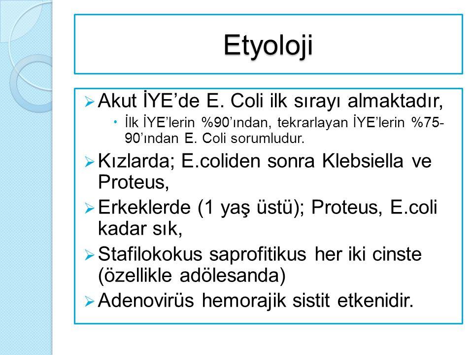 Etyoloji Akut İYE'de E. Coli ilk sırayı almaktadır,