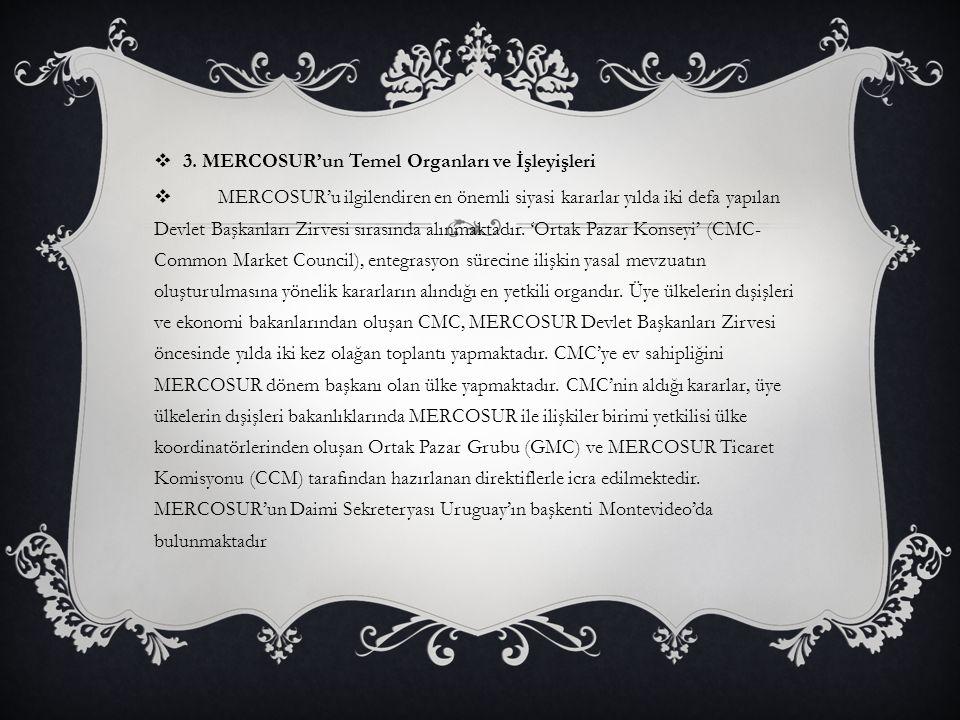 3. MERCOSUR'un Temel Organları ve İşleyişleri
