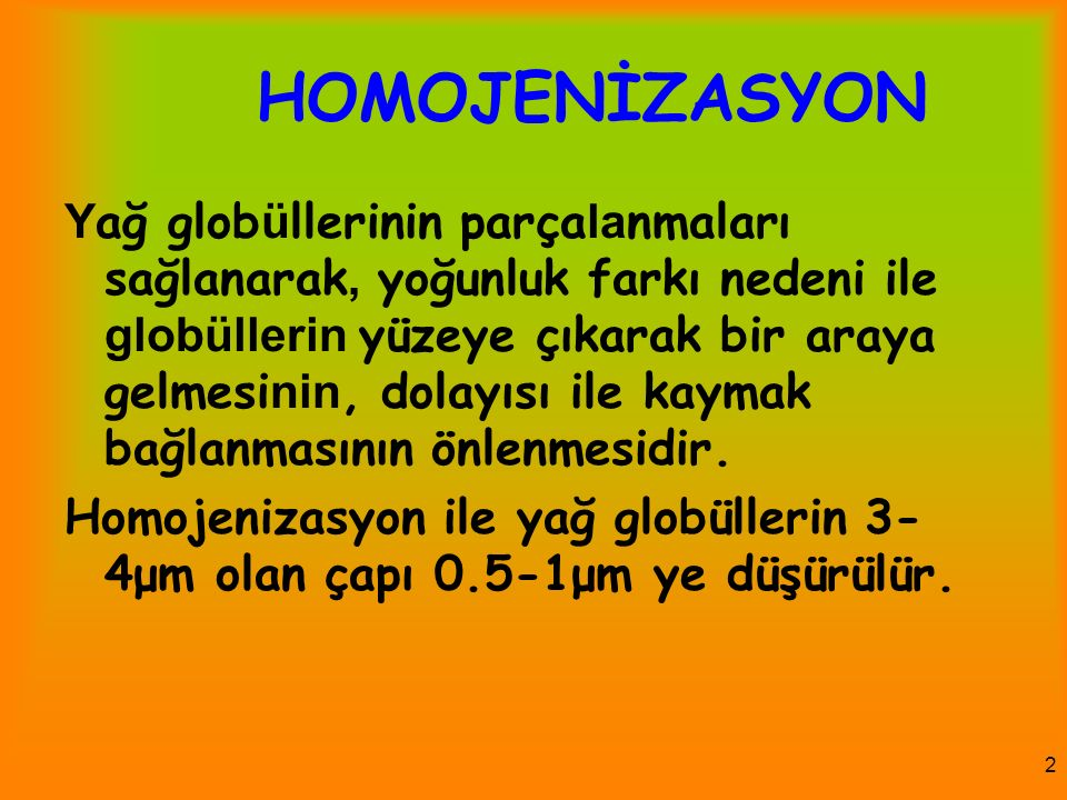 HOMOJENİZASYON