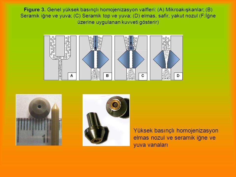 Figure 3. Genel yüksek basınçlı homojenizasyon valfleri: (A) Mikroakışkanlar; (B) Seramik iğne ve yuva; (C) Seramik top ve yuva; (D) elmas, safir, yakut nozul (F:İğne üzerine uygulanan kuvveti gösterir)