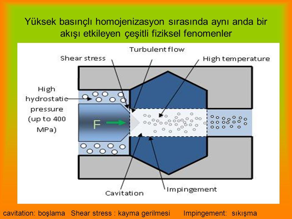 Yüksek basınçlı homojenizasyon sırasında aynı anda bir akışı etkileyen çeşitli fiziksel fenomenler