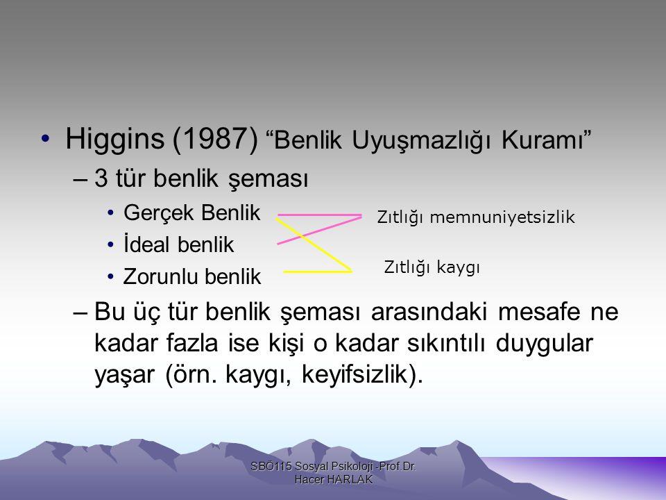 SBÖ115 Sosyal Psikoloji -Prof.Dr. Hacer HARLAK