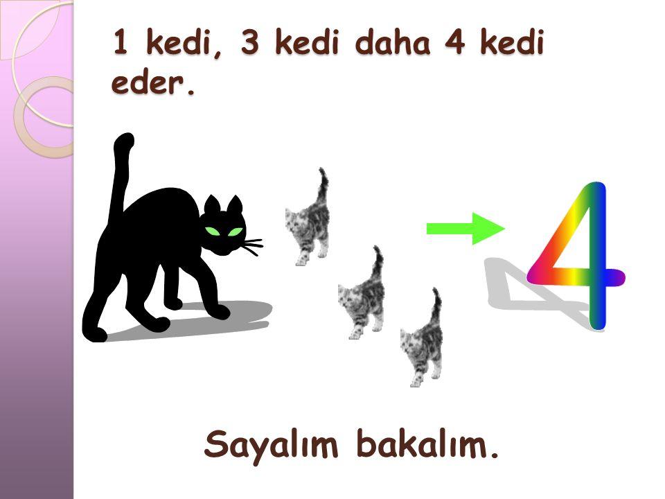 1 kedi, 3 kedi daha 4 kedi eder.