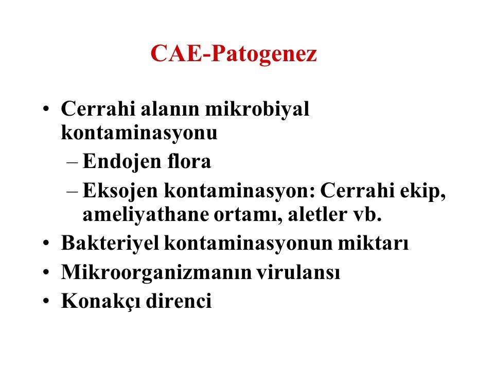 CAE-Patogenez Cerrahi alanın mikrobiyal kontaminasyonu Endojen flora