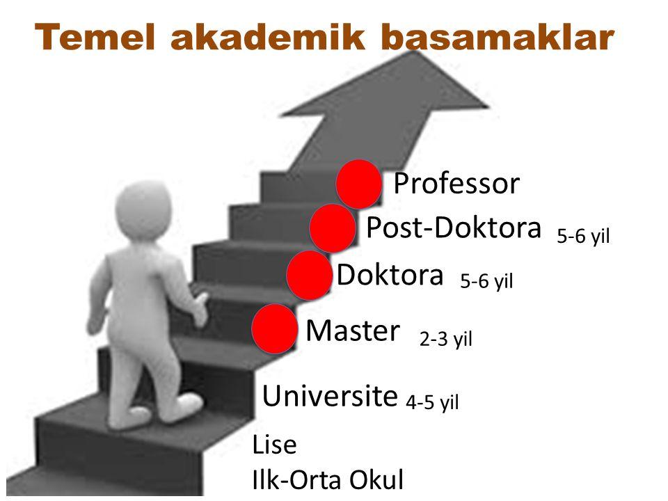 Temel akademik basamaklar
