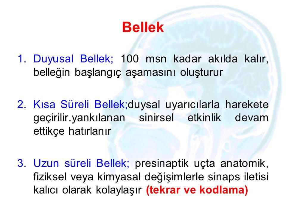 Bellek Duyusal Bellek; 100 msn kadar akılda kalır, belleğin başlangıç aşamasını oluşturur.