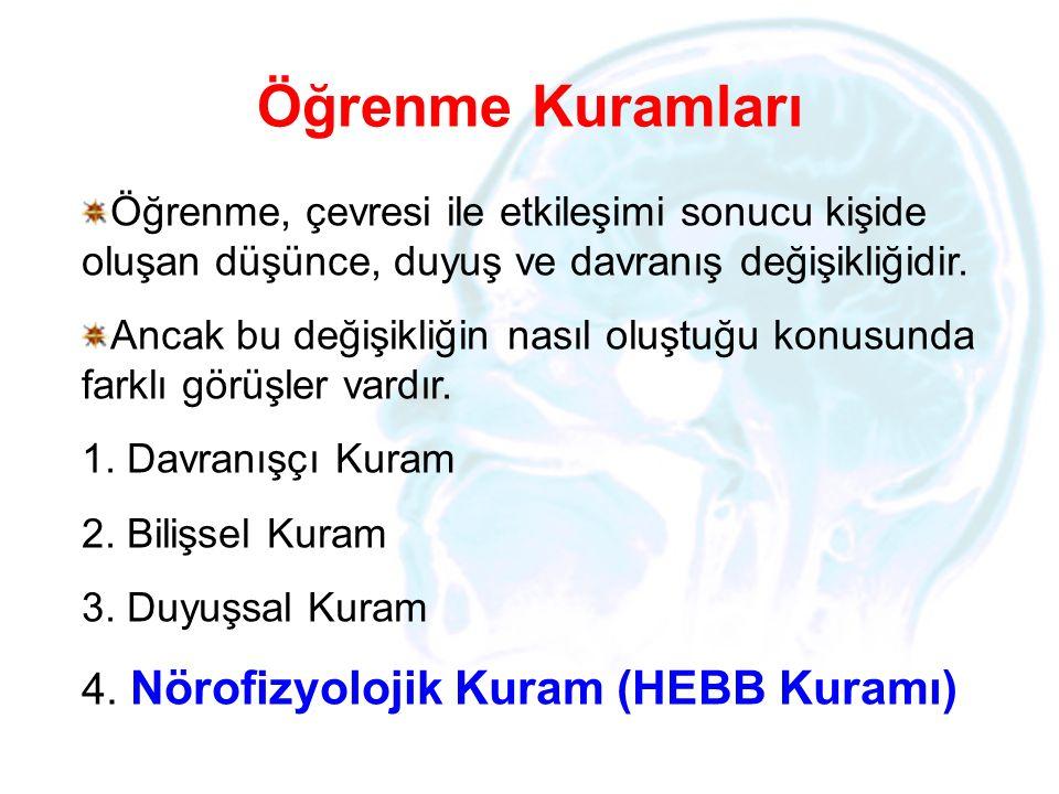 Öğrenme Kuramları Nörofizyolojik Kuram (HEBB Kuramı)