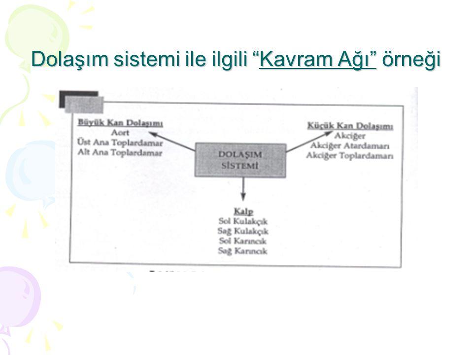 Dolaşım sistemi ile ilgili Kavram Ağı örneği