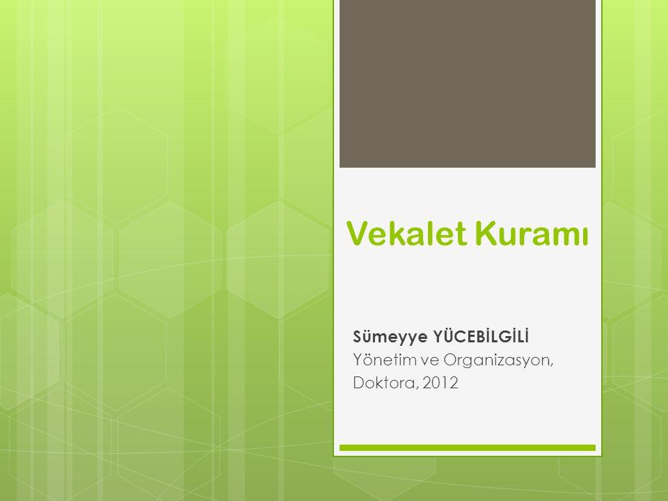 Sümeyye YÜCEBİLGİLİ Yönetim ve Organizasyon, Doktora, 2012