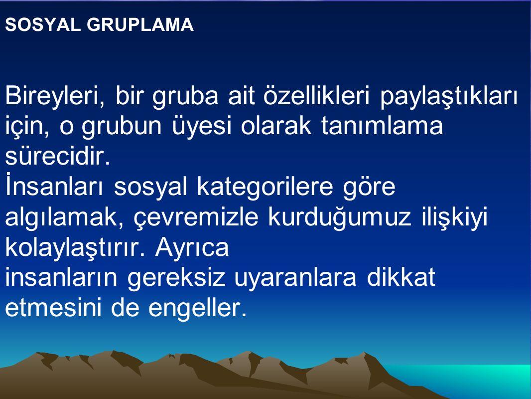 SOSYAL GRUPLAMA