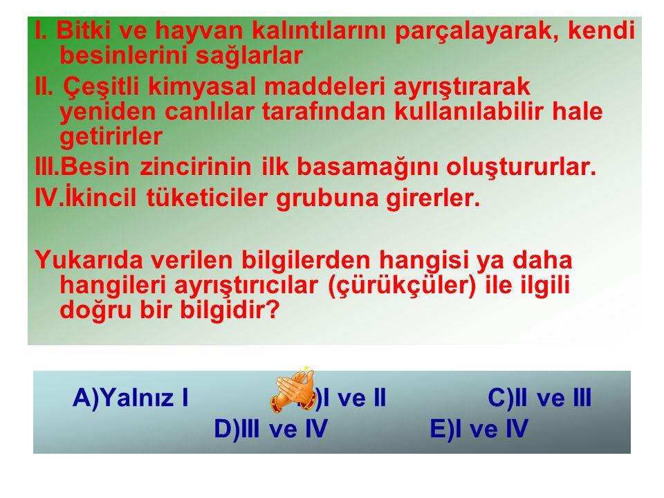 A)Yalnız I B)I ve II C)II ve III D)III ve IV E)I ve IV