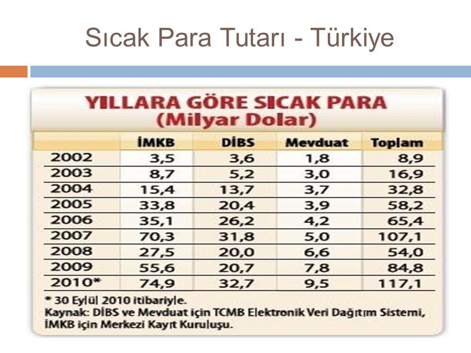 Sıcak Para Tutarı - Türkiye