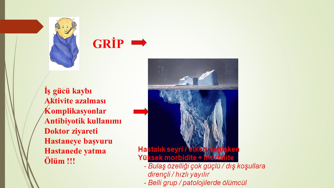 GRİP İş gücü kaybı Aktivite azalması Komplikasyonlar