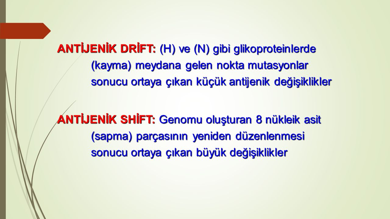ANTİJENİK DRİFT: (H) ve (N) gibi glikoproteinlerde (kayma) meydana gelen nokta mutasyonlar sonucu ortaya çıkan küçük antijenik değişiklikler
