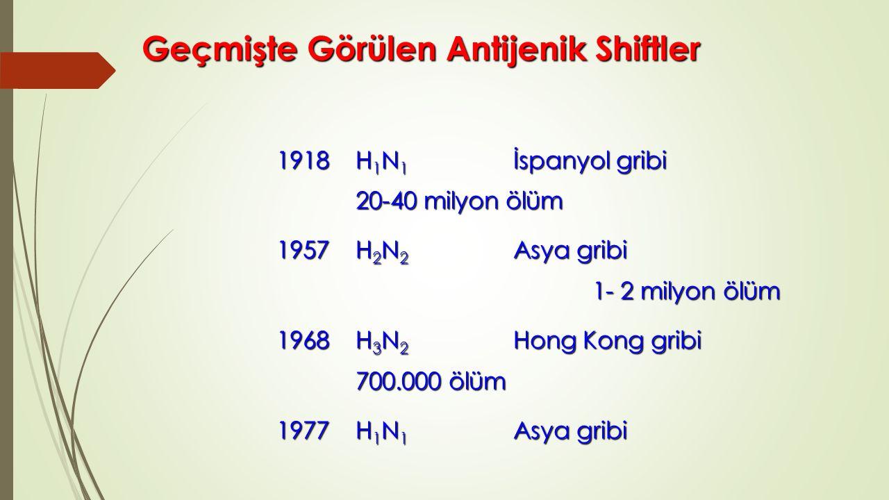 Geçmişte Görülen Antijenik Shiftler