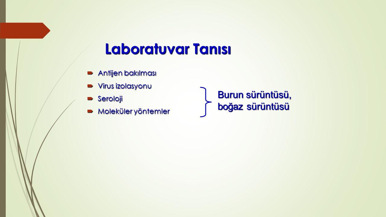 Laboratuvar Tanısı Burun sürüntüsü, boğaz sürüntüsü Antijen bakılması