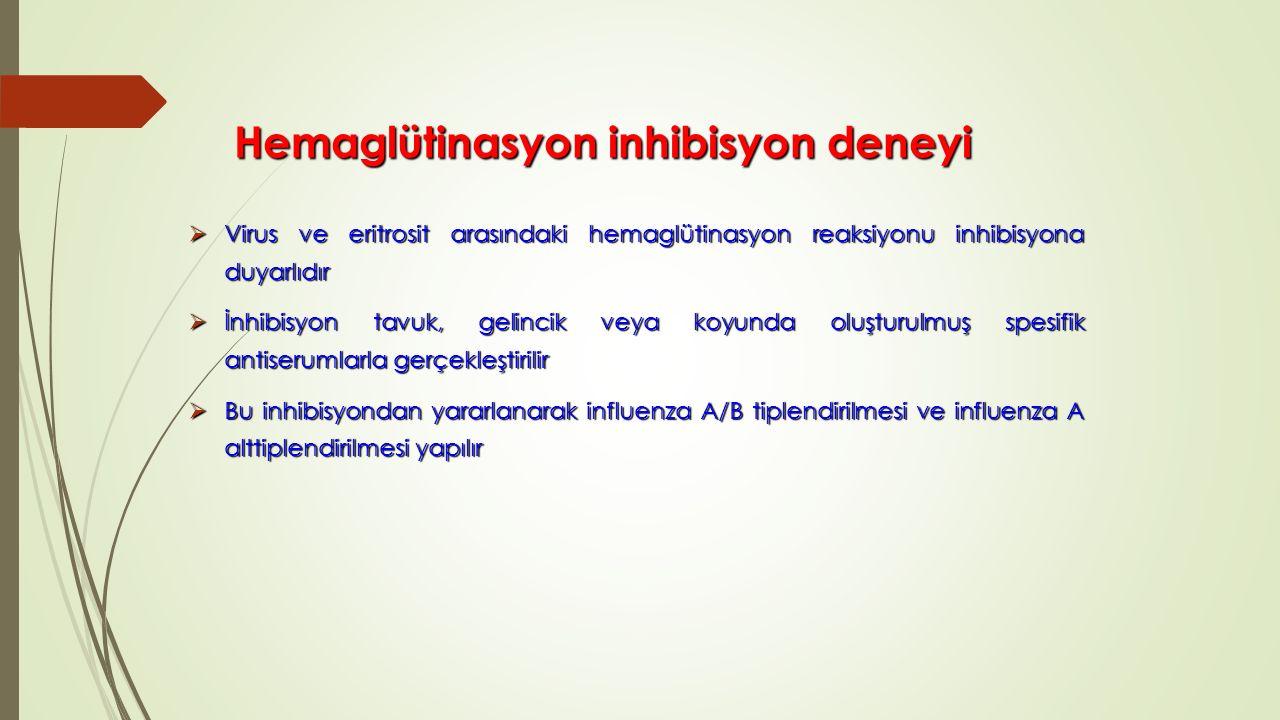 Hemaglütinasyon inhibisyon deneyi