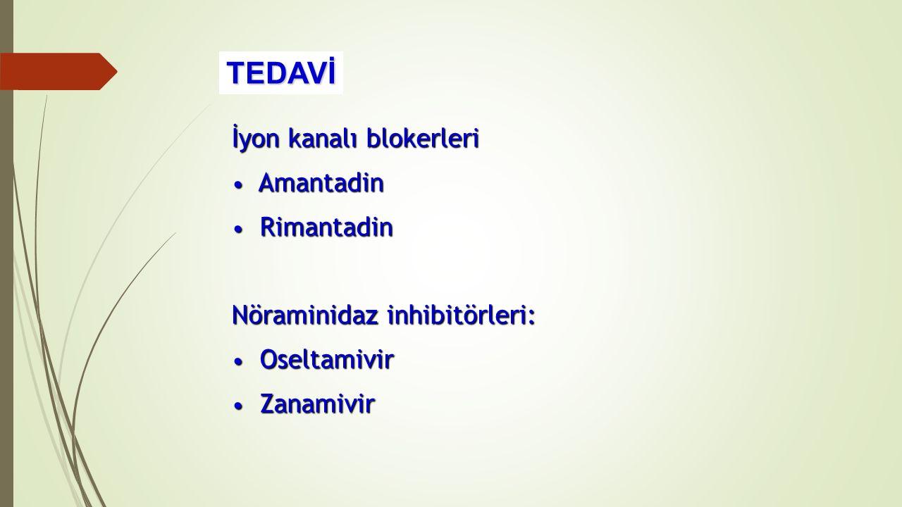 TEDAVİ İyon kanalı blokerleri Amantadin Rimantadin