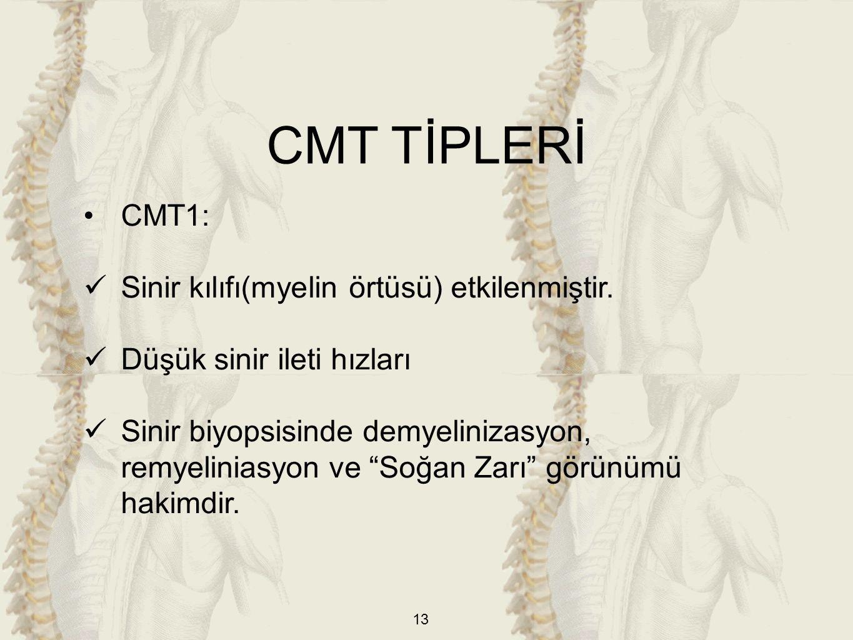 CMT TİPLERİ CMT1: Sinir kılıfı(myelin örtüsü) etkilenmiştir.