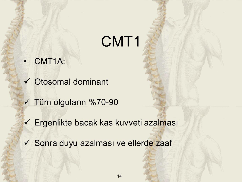 CMT1 CMT1A: Otosomal dominant Tüm olguların %70-90