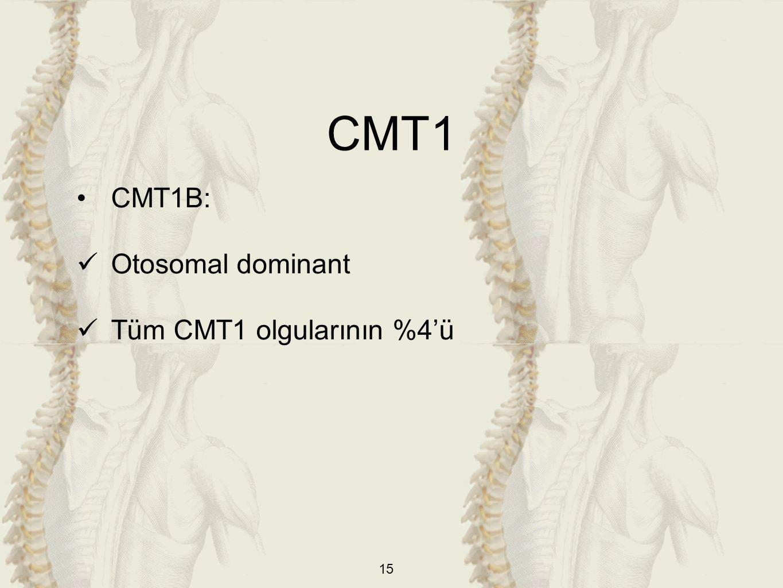 CMT1 CMT1B: Otosomal dominant Tüm CMT1 olgularının %4'ü