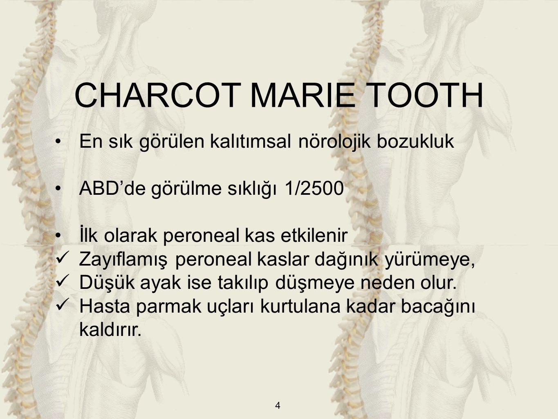 CHARCOT MARIE TOOTH En sık görülen kalıtımsal nörolojik bozukluk