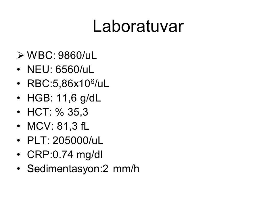 Laboratuvar WBC: 9860/uL NEU: 6560/uL RBC:5,86x106/uL HGB: 11,6 g/dL