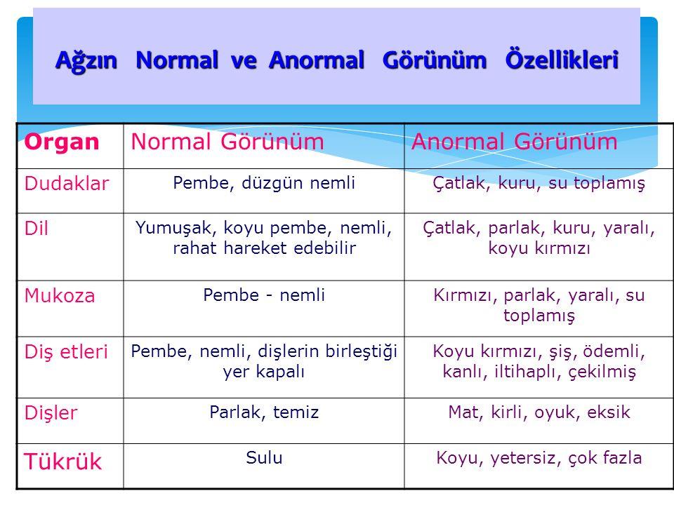 Ağzın Normal ve Anormal Görünüm Özellikleri