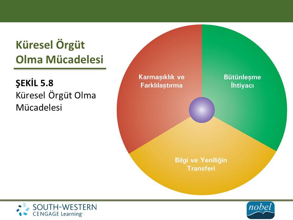 Küresel Örgüt Olma Mücadelesi ŞEKİL 5.8 Küresel Örgüt Olma Mücadelesi