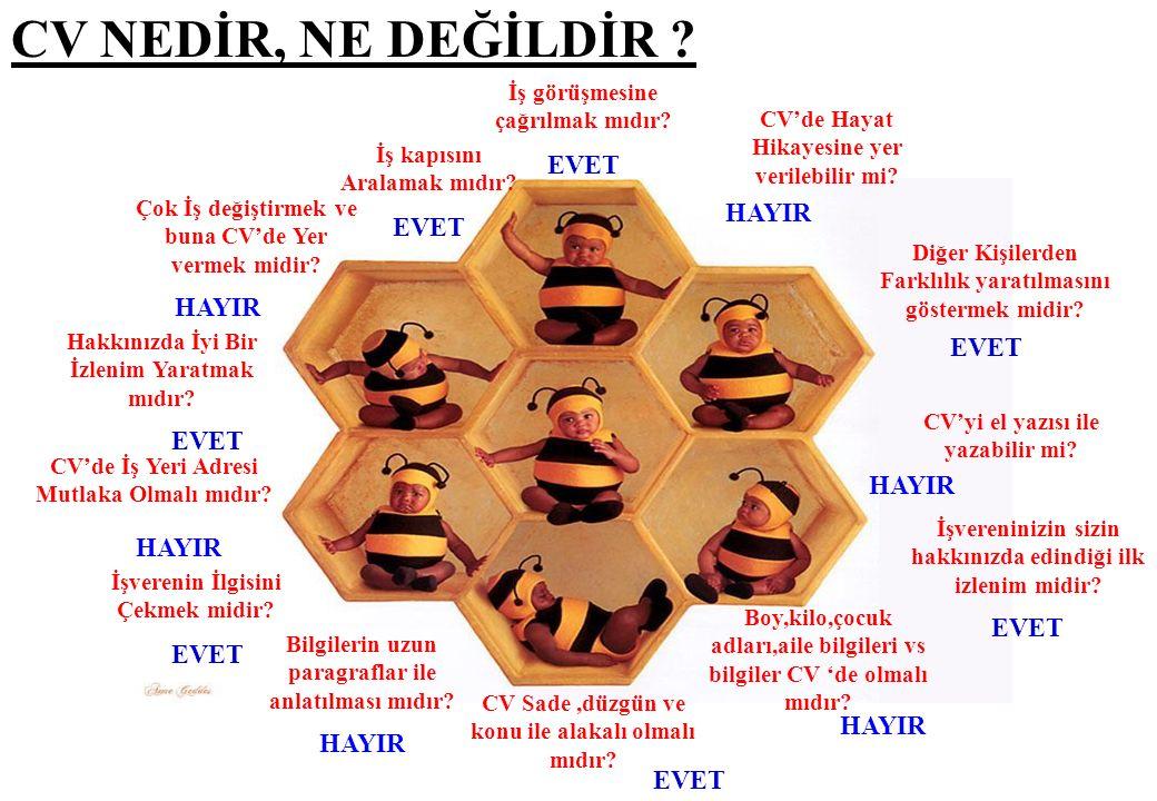 ÖZGEÇMİŞİN BÖLÜMLERİ İletişim Bilgileri Eğitim İş Deneyimi Yabancı Dil
