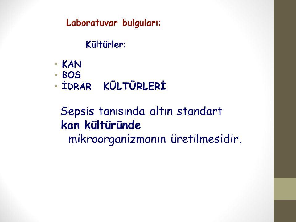 mikroorganizmanın üretilmesidir.