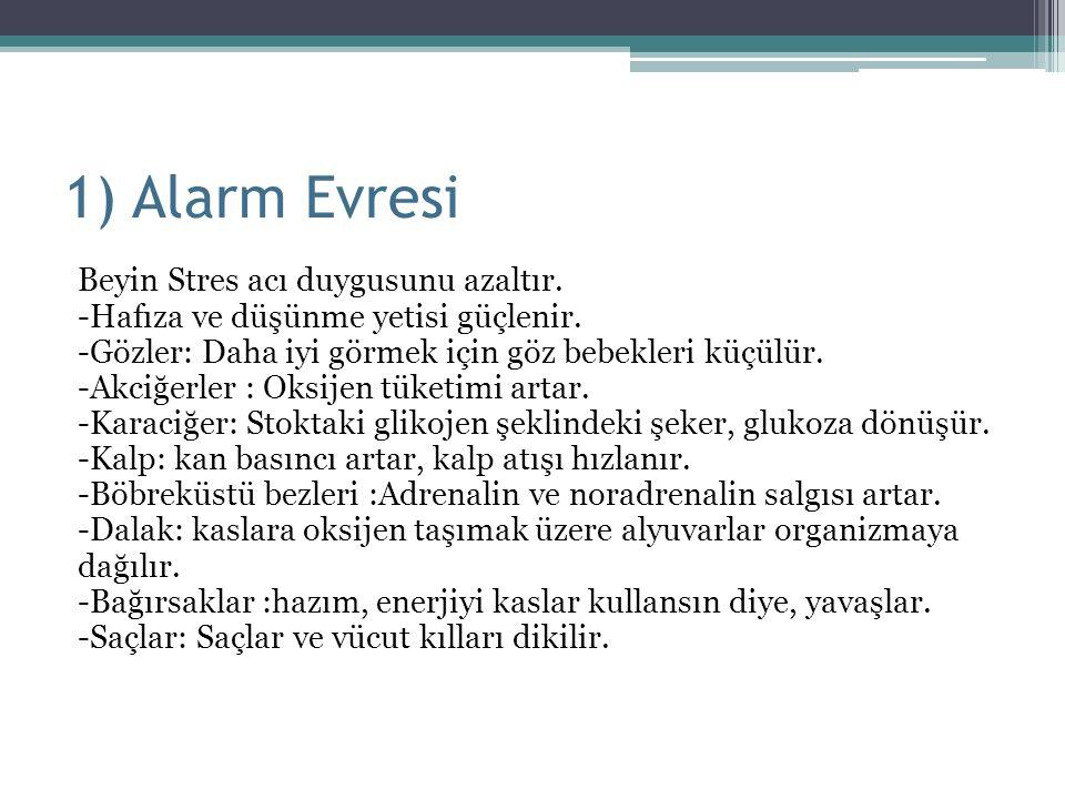 1) Alarm Evresi