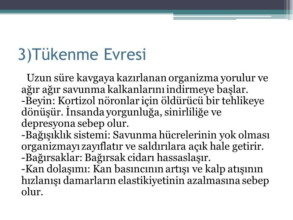 3)Tükenme Evresi