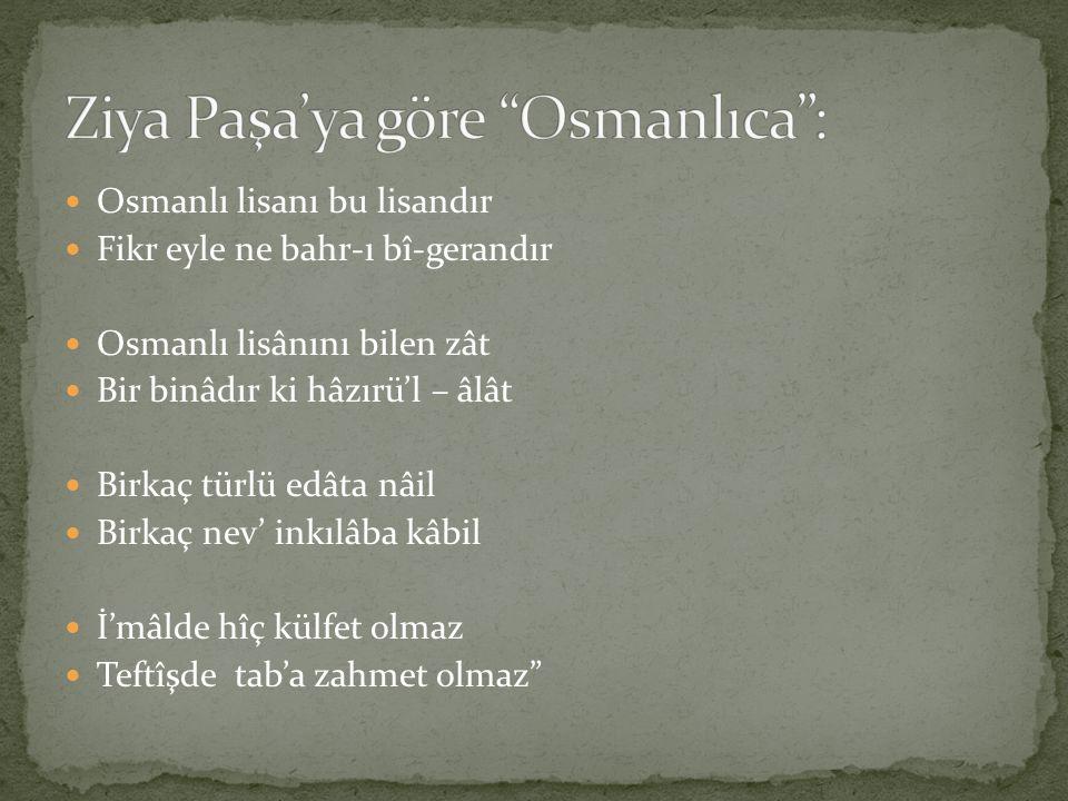 Ziya Paşa'ya göre Osmanlıca :