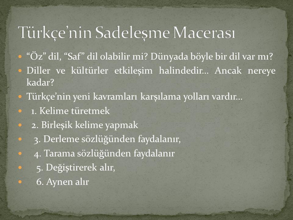 Türkçe'nin Sadeleşme Macerası