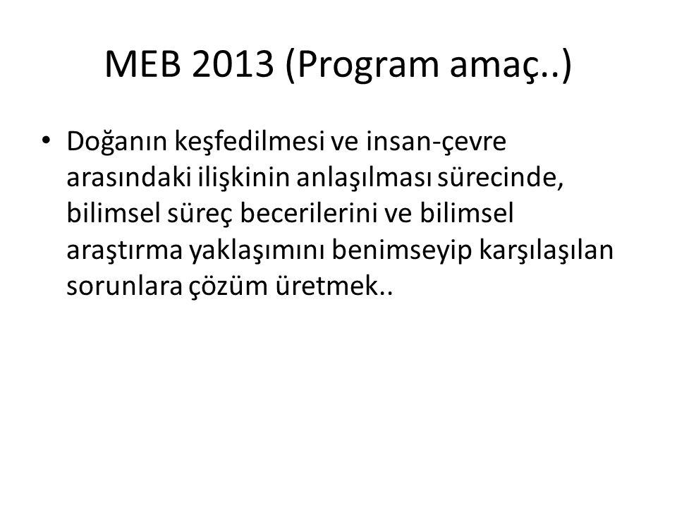 MEB 2013 (Program amaç..)