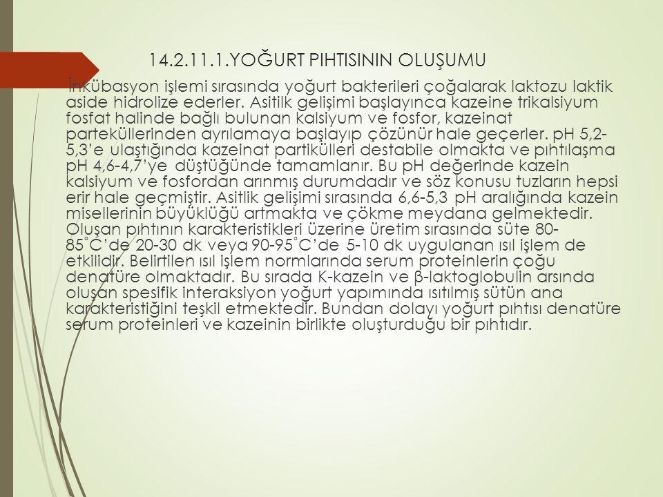 14.2.11.1.YOĞURT PIHTISININ OLUŞUMU