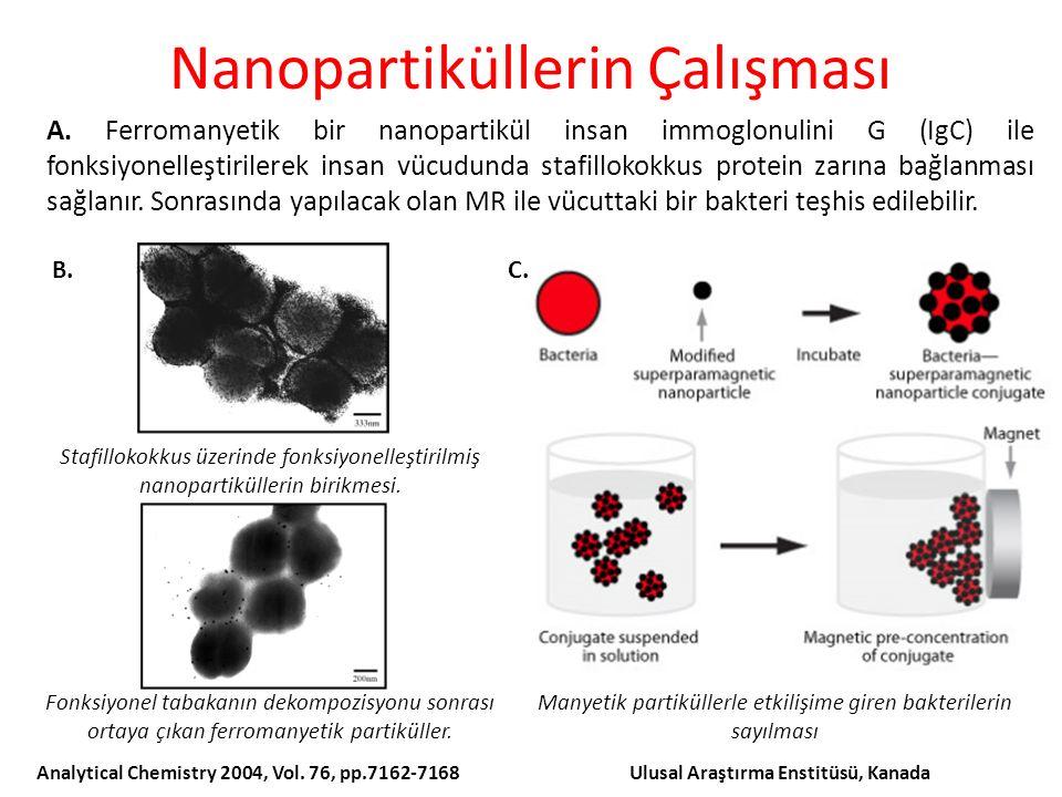 Nanopartiküllerin Çalışması