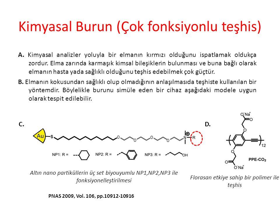 Kimyasal Burun (Çok fonksiyonlu teşhis)