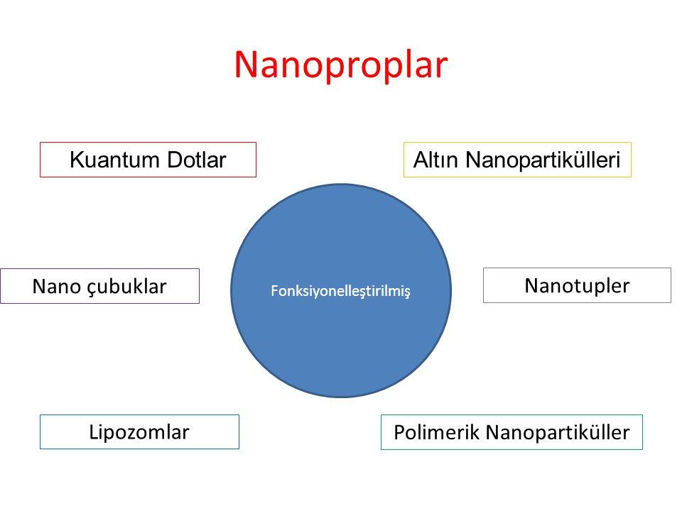 Nanoproplar Kuantum Dotlar Altın Nanopartikülleri Nano çubuklar