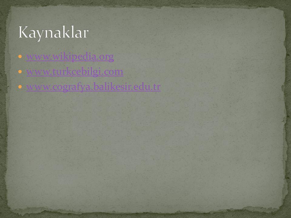 Kaynaklar www.wikipedia.org www.turkcebilgi.com