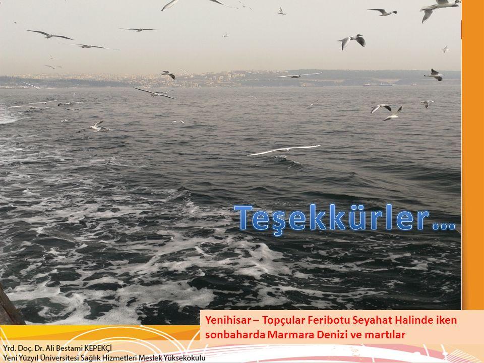 Teşekkürler… Yenihisar – Topçular Feribotu Seyahat Halinde iken sonbaharda Marmara Denizi ve martılar.