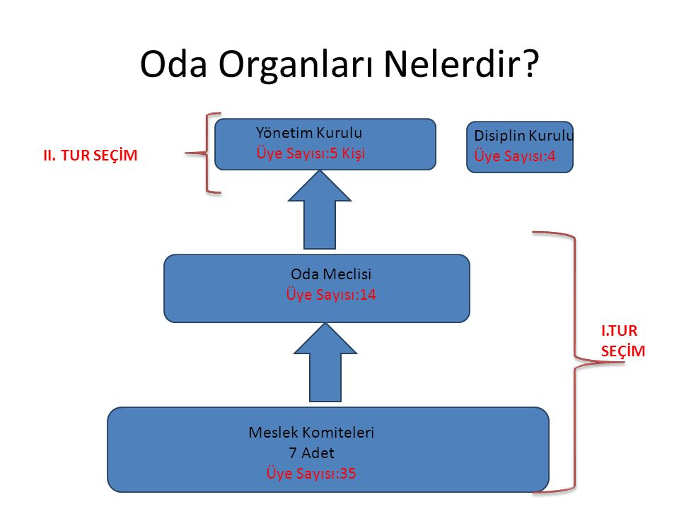 Oda Organları Nelerdir